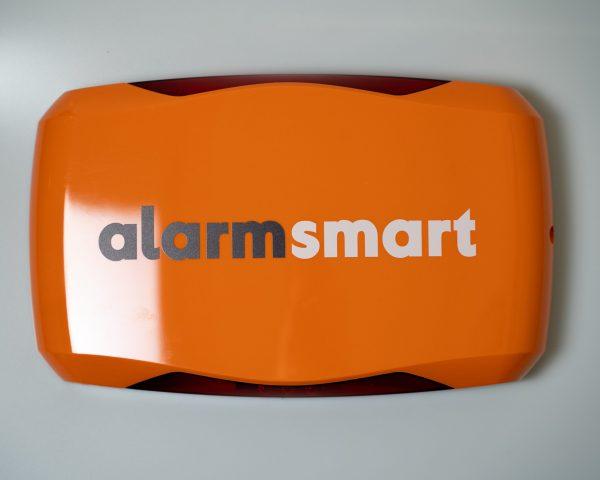 Decoy Alarm Box